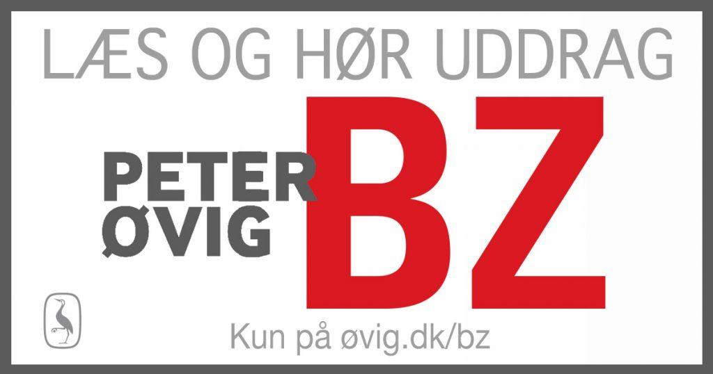 bz-uddrag-banner